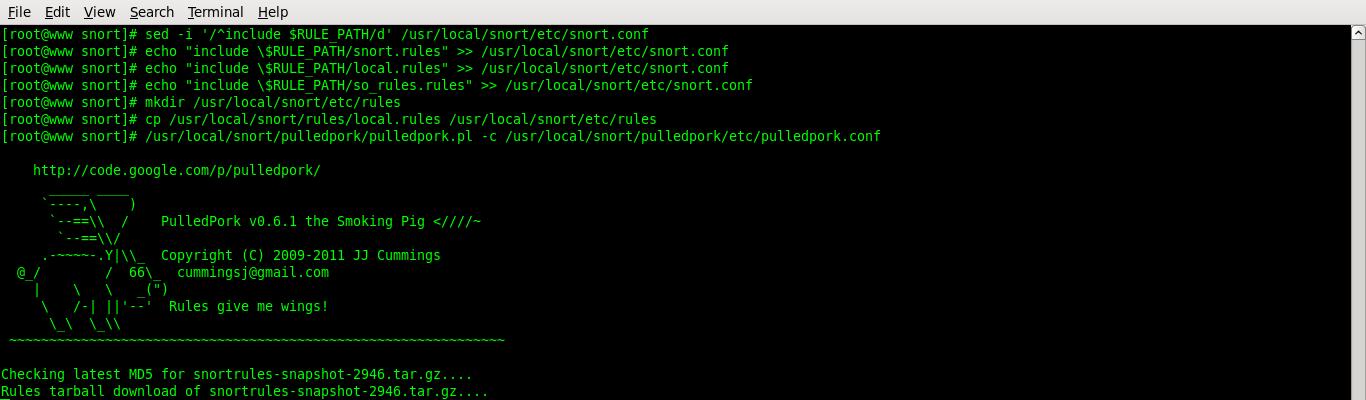 linux intrusion detection system pdf